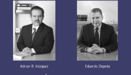 The Best Lawyers in Mexico 2020, Los Mejores Abogados de México 2020, Guía Ranking de Abogados, International Trade,, Tax Law, Trade Law, Adrian B Vazquez Eduardo Zepeda Grimaldo, Recognized Lawyers,