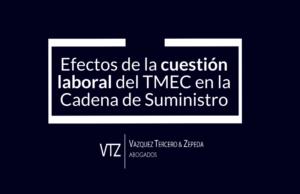 Capítulo Laboral, TMEC, Maquiladoras, Cadenas de Suministro, Estados Unidos, México, Derechos Colectivos, Derecho de Asociación, Mecanismo de respuesta rápida, Comisión, TLCAN, Panel Laboral, Explicación
