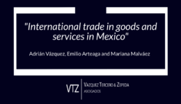 trade empresa, Thomson Reuters Practical Law, International trade in goods and services in Mexico, import and export restrictions, import to USA from Mexico, customs law USA,